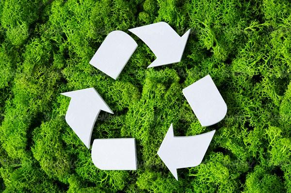 پلاستیک و محیط زیست